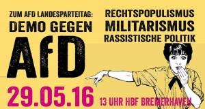 Demo gegen AFD 29.05.16 BRH